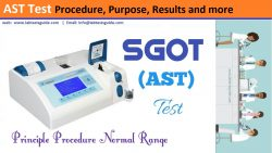 AST Test Procedure