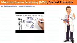 Maternal Serum Screening