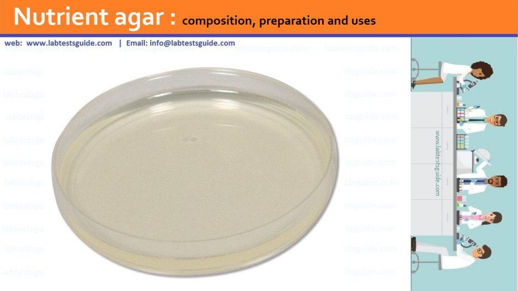 Nutrient Agar