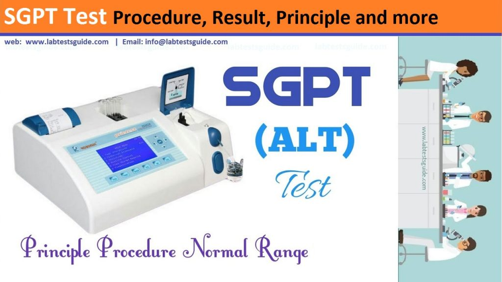 SGPT Test Procedure
