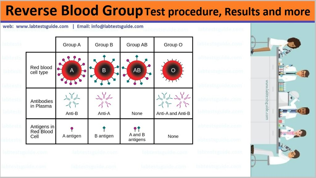 Reverse Blood Grouping
