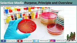Selective Culture Media