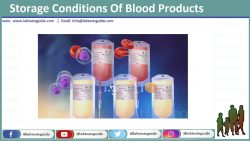 Storage Conditions Of Blood Products
