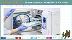 Autoclave Sterilization