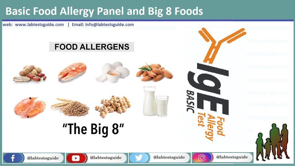 Basic Food Allergy Panel