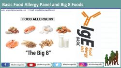 Basic Food Allergy Panel