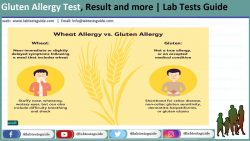 Gluten Allergy Test