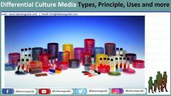 Differential Culture Media