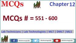 MCQs Chapter 12