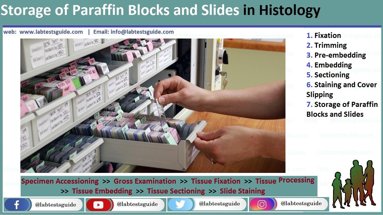 Storage-of-Paraffin-Blocks-and-Slides