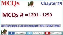 MCQs Chapter 25