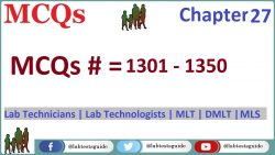 MCQs Chapter 27